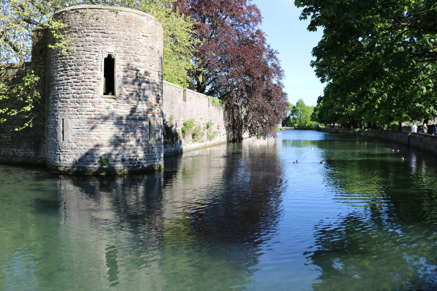 Bishops-Palace-Moat-Wells.JPG