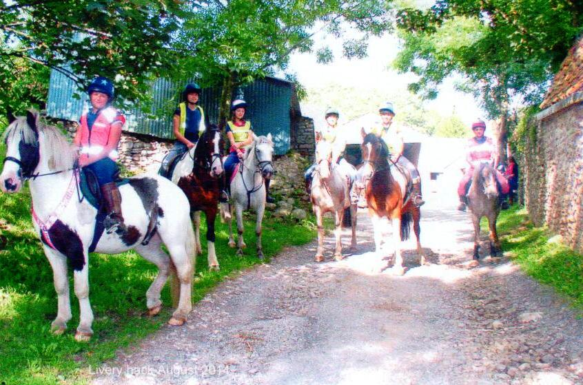 Riding lessons and trekking